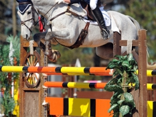 Cooper Made Show Jumping Look Easy