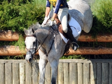 Cooper Placed Third In His First Advanced At Morven Park (Va.).