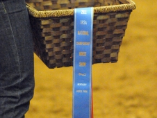 "<A href=""http://chronofhorse.com/article/centenary-stays-strong-day-two-ihsa-nationals"">Day Two At The IHSA National Championship</a>"