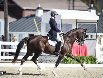 Dressage At Devon - Prix St. Georges