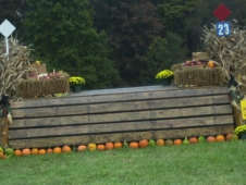 Fence 23, the Harvest Table