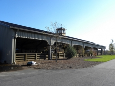 Indoor Arenas Need Outside Light