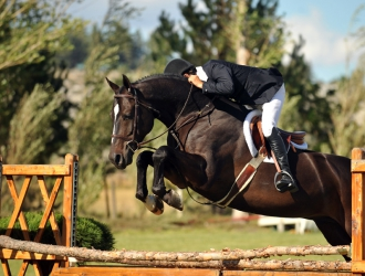 Franktown Meadows Hunter Derby