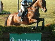 "Kadi Eykamp And Double Rivers Really Cool Hold The Lead At The <a href="" http://www.chronofhorse.com/article/eykamp-holds-lead-nutrenausea-american-eventing-championships""> Nutrena/USEA American Eventing Championships</a>"