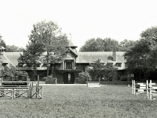 Competition Field