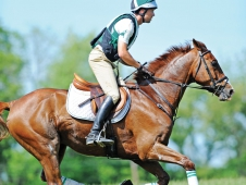 "<a href=""http://www.chronofhorse.com/article/search-most-balanced-gallop""<a> In Search Of The Most Balanced Gallop</a>"
