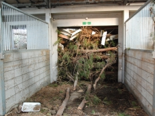 Debris Fills A Barn Aisle