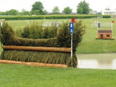 Fence 8AB: The Bit Of Britain Brush Water Challenge