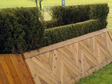 Fence 11: The U.S. Eventing Association Double Brush Table