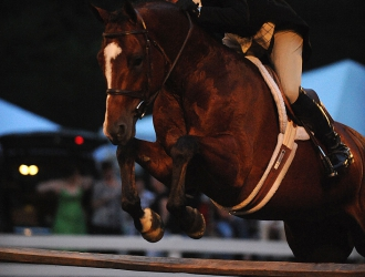 Keswick $15,000 Chronicle of the Horse/USHJA International Hunter Derby
