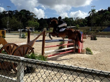 XIII Copa de Reyes Jumper Invitational