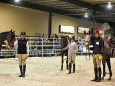 The Retired Racehorse Trainer Challenge Begins In Maryland
