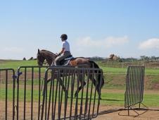 Last Gallop