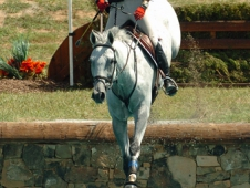 "Kjellstrom Takes Training Amateur Title At <a href="" http://www.chronofhorse.com/article/kjellstrom-takes-training-amateur-title-nutrenaus-eventing-association-american-eventing-cha ""> Nutrena/USEA American Eventing Championships</a>"
