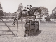 "<a href=""http://www.chronofhorse.com/article/chronicle-through-decades-1960s"">A Green Working Hunter Of The '60s</a>"
