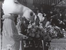 1994 World Equestrian Games