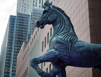 The Horses Of Chicago