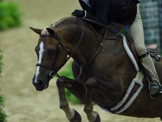 U.S. Pony Finals Pony Medal