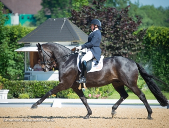 U.S. Riders Dominate At Achleiten CDI
