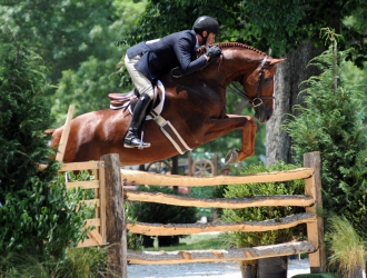 Wednesday Hunters At The 2011 Upperville Colt And Horse Show