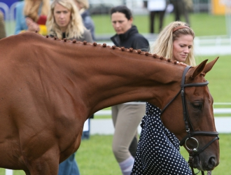 White Pants, Big Withers And Thoroughbreds Are All The Rage At Burghley