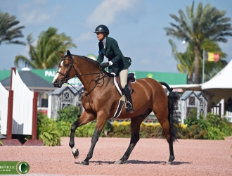 2017 Winter Equestrian Festival WCHR Week