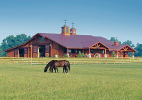 The chronicle of the horse for Design your own farm layout