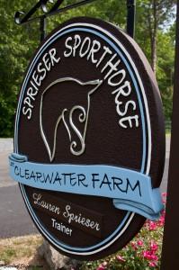 Sprieser-Sporthorse.jpeg