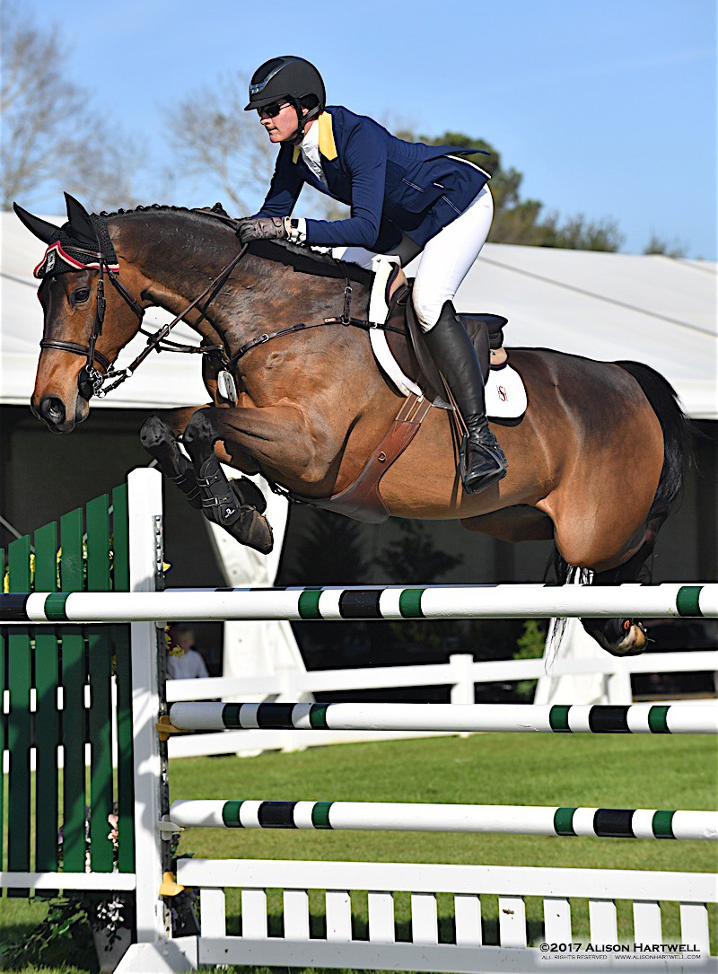 Buy depo provera for horses.doc - Shannon Hicks Guided Emir D To The Top Of The 25 000 Nutrena Grand Prix At The