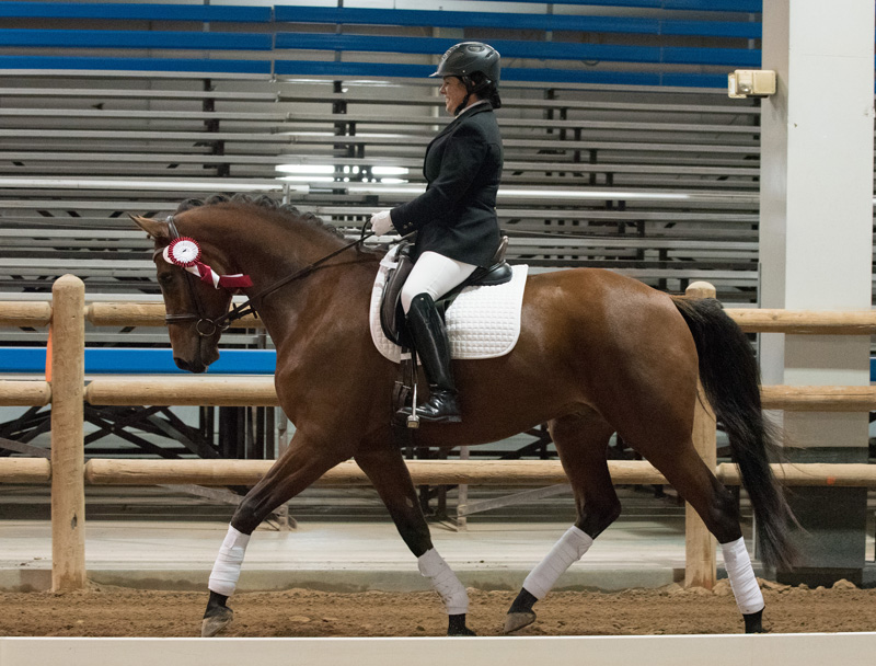Renee Cash Chong and Icon DES at the Region 6 Championships. Photo by Carolynn Bunch Photography.