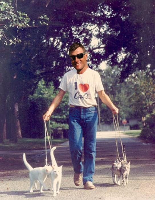 Boyd Loves Cats 023ff2c6c107fa0490cfa17849ffa540