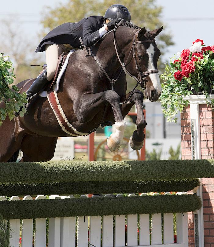 2018-spring4-hunter-derby-jenny-k-really-jumping