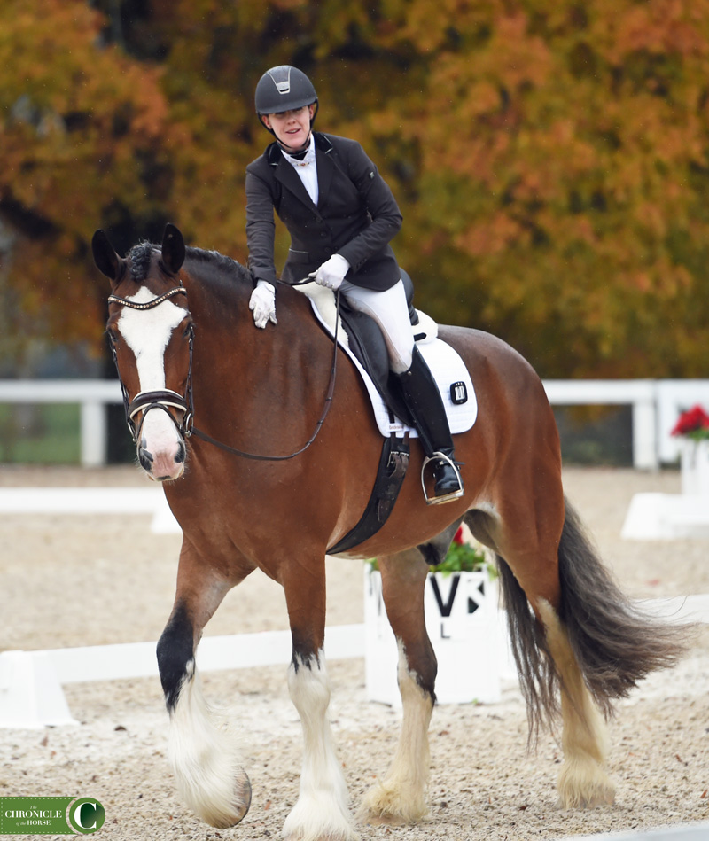 A Mule And A Shire Walk Into A Ring At U.S. Dressage Finals