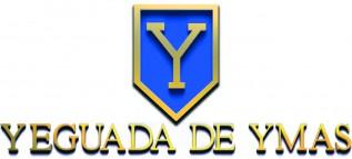 Yeguada De Ymas