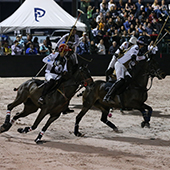 Gladiator Polo™