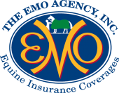 The EMO Insurance Agency
