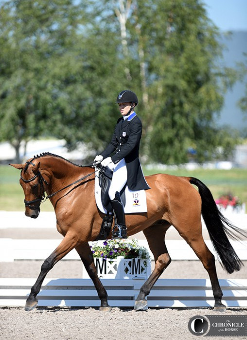 Dassett Profile and McKinsey Wickman trotted into first place after one-star dressage at the Adequan FEI North American Youth Championships with a score of 28.6 penalties.