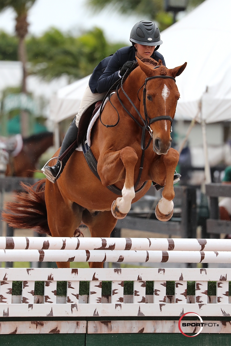 24/01/2018 ; Wellington FL ; Winter Equestrian Festival - Week 3