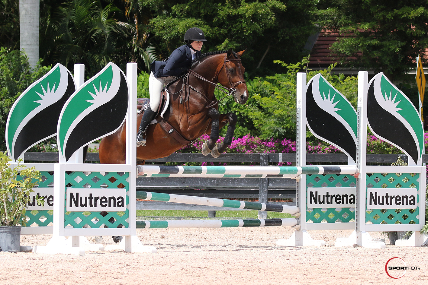 27/03/2019 ; Wellington FL ; Winter Equestrian Festival - Week 12