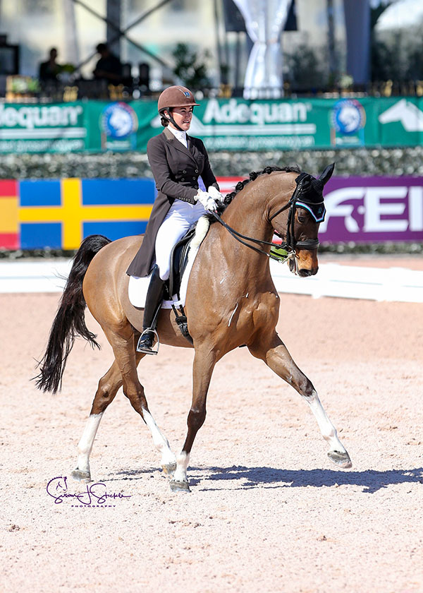 P.J. Rizvi (USA) and  Breaking Dawn in their winning ride in the GP for Freestyle 3*. ©SusanStickle.com