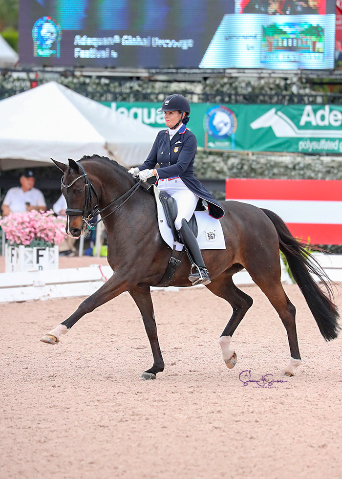 Ashley Holzer (USA) and her own Valentine took the top spot in the FEI Intermediaire-1 CDI3*, presented by Fair Sky Farm, with a score of 72.882%. © SusanStickle.com