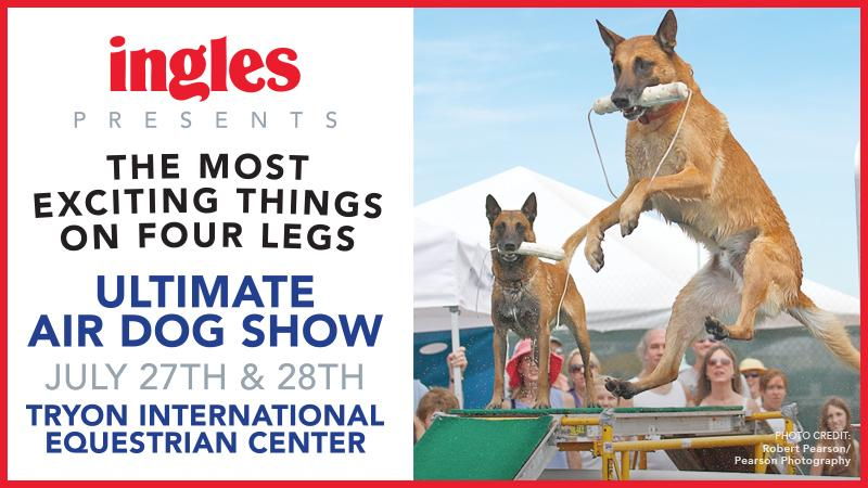 Click to learn more about Ultimate Air Dogs at TIEC!