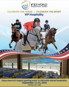 WEG VIP Brochure Cover